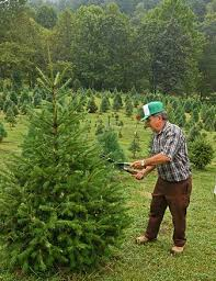 xmas tree farmer - Christmas Tree Farming